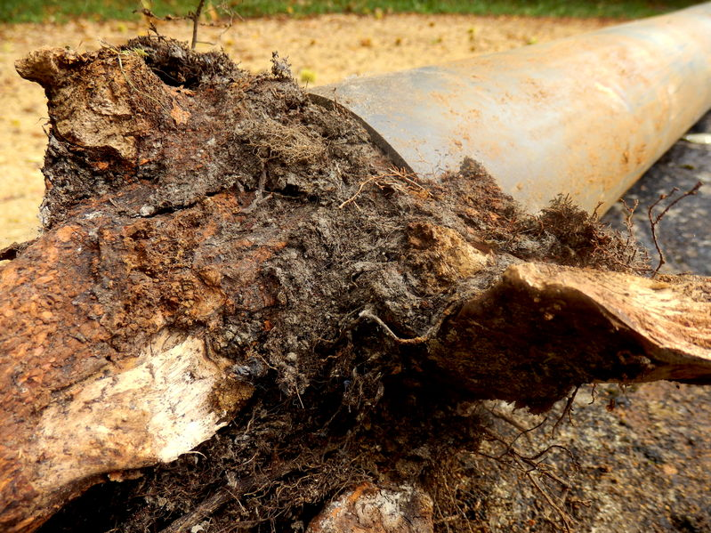 Signs Your Pipes Need Hydro Jetting